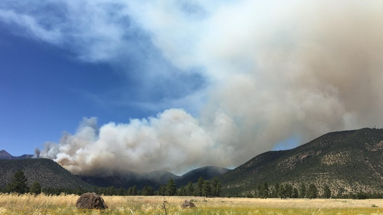 Evacuation in effect as Museum Fire burns north of Flagstaff