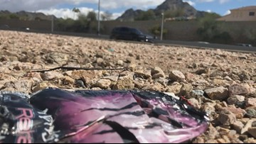 State Route 51 is the most trashed freeway in Maricopa County, report says
