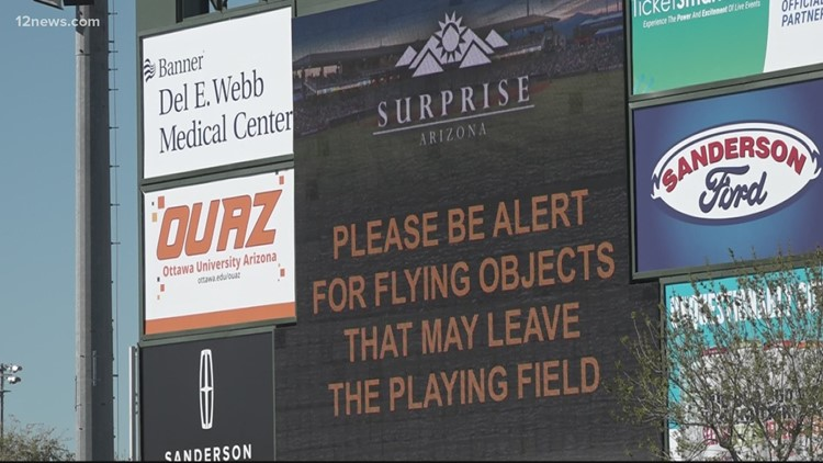 Safety advocate wants independent council to determine safest height and length of foul ball netting due to current inconsistency