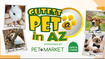 Cutest Pet in AZ contest is back!
