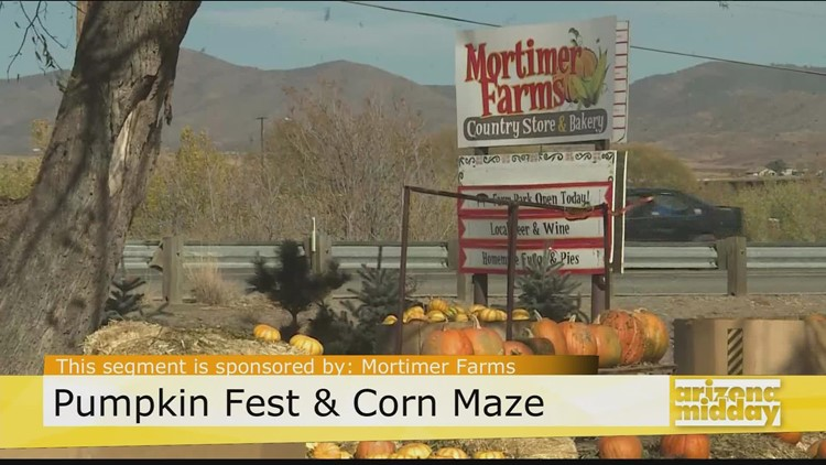 Road Trip: Head to Mortimer Farms' Pumpkin Fest & Corn Maze