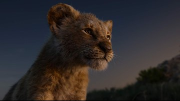 Review: Be prepared, The Lion King remake has no emotion