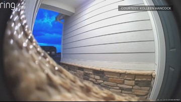 A lady's doorbell cam footage of a snake is traumatizing — and so are the comments