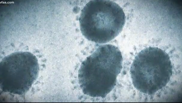 What is coronavirus? Here's what you need to know about the new strain from Wuhan, China