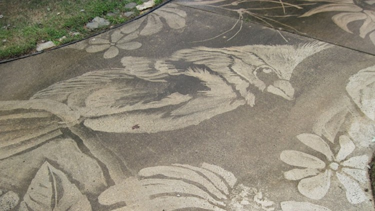 Good, clean fun: Woman creates art with a power washer