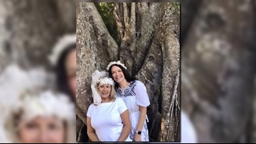 'I am not a whack job': Woman who 'marries' century-old Florida ficus tree saves it